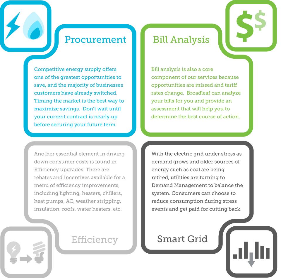 Electric Gas Procurement, Bill Analysis, Smart Grid, Efficiency